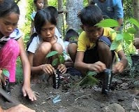 Kids planting mango trees in the Ring of Fire